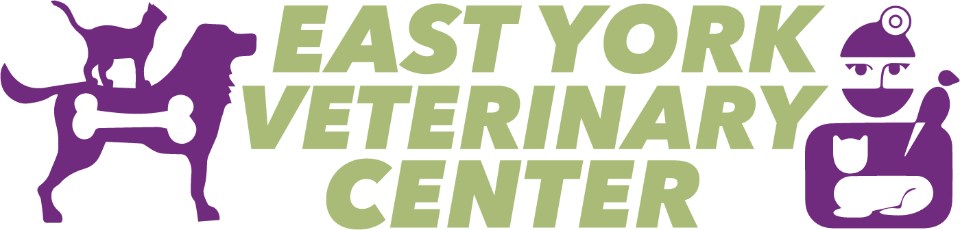 East York Veterinary Center